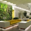 Applied-Green-Plants-in-Home-Interior