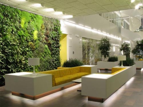 Top Benefits Of Interior Plant Decoration Gardens