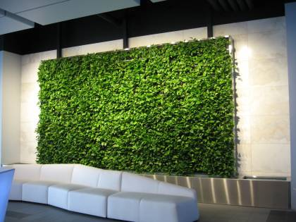 Live-Nation-Green-Wall-Ambius