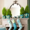 Turquoise-stockings-and-lemon-cypress-cones-260x300