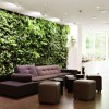 garden-wall-1000x706