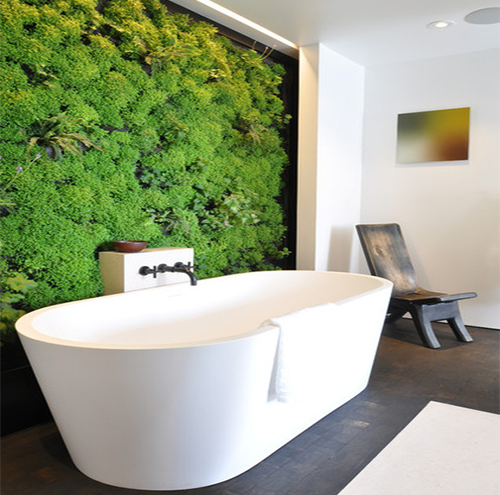 Living Wall Applications | Interior Gardens