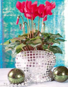 pink-poinsettias-in-container-that-looks-like-thin-strips-of-driftwood--235x300