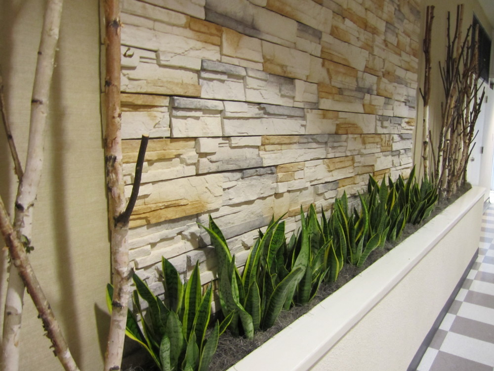 Plant design trends for las vegas homes and offices for Interior designs with plants