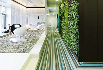 vienna-microsoft-green-wall-mindful-design-consulting
