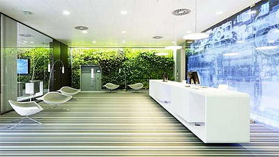 Green Walls In Office Design What Are The Benefits
